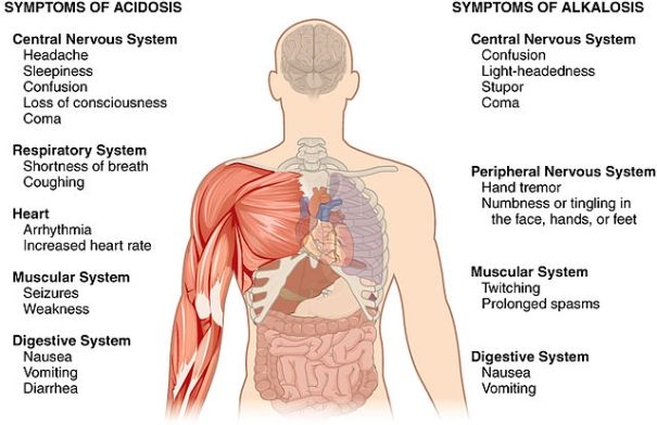 Symptoms_of_Acidosis_Alkalosis