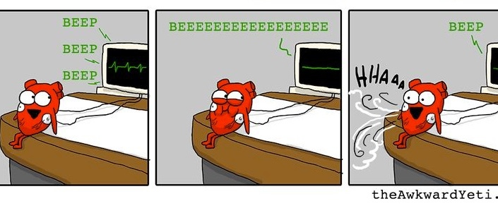 ecg heart flatline